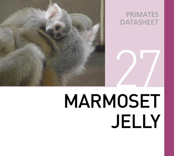 Корм для мартышек и тамаринов  Marmoset Jelly Mazuri Zoo Foods